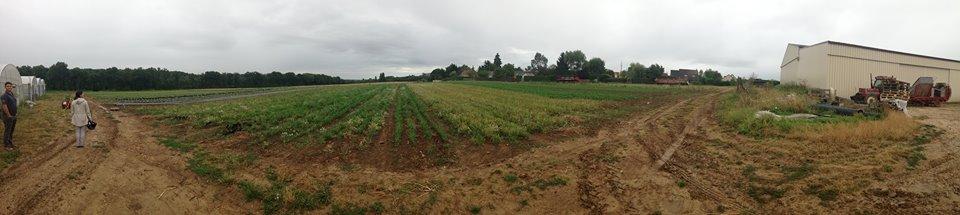 Panoramique de la ferme Lafouasse